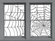 spider webs posters shown in two windows