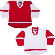 NHL Uncrested Replica Jersey DJ300 - Detroit Red Wings