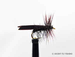 Black Tentwing Caddis