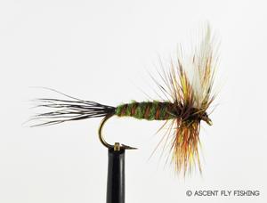 Hen Wing Green Drake