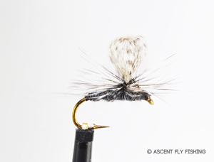 Loopwing Parachute Callibaetis