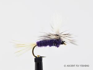 Parachute Purple Haze