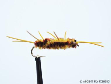 Yellow & Black Pat's Rubber Legs