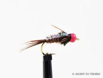 Hot Pink Beadhead Pheasant Tail Flashback