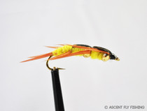 Yellow Double Beadhead Stonefly Nymph