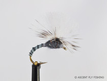 Parachute Grey Drake Biot Emerger