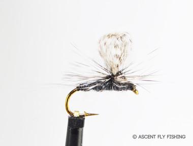 Parachute Loopwing Callibaetis