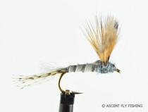 Hendrickson Sparkle Dun