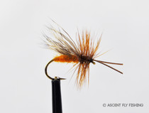 October Caddis