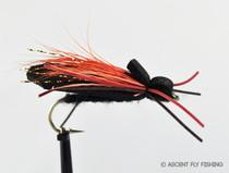 Cicada - Black/Orange