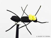 Chernobyl Ant