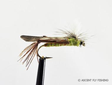 size 14 Parachute Hopper Yellow