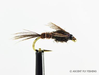Pheasant Tail Nymph