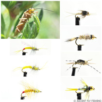 Yellow Sally Stonefly Selection