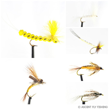 Hex Mayfly Selection