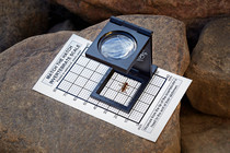 Fly Fishing Magnifier and Hook Size Chart