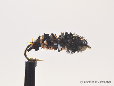 Rockroller Cased Caddis Larva