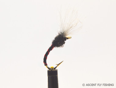 Bloodworm Emerger