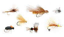 Mixed Dozen Dry Fly Selection