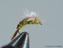 Parachute Greg's Emerger - BWO