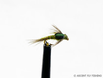 Split Case BWO
