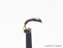 Brown & Black UV Flashback Juju Baetis