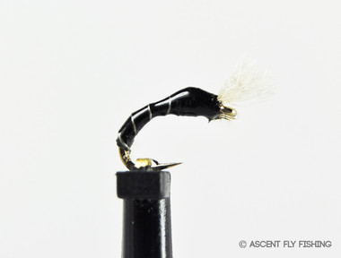 3D Epoxy Black Fly Larva