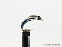 Blue & Black Jujubee Midge