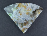 Rare Horse Canyon Plume Agate - Green, Orange and White Plumes  #14600