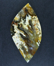 Unique Graveyard Point Plume Agate Cabochon   #15705