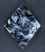 Exceptional Snake River Dendritic Agate Cabochon #17100
