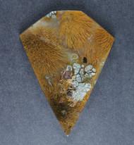 Gorgeous Designer Cabochon of Nipomo Sagenite/Marcasite Agate  #17282