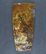 Dramatic Riviera Moss/Plume Agate Designer Cabochon  #17308