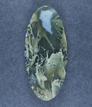 Amazing Priday Moss Agate Designer Cabochon-   #17405