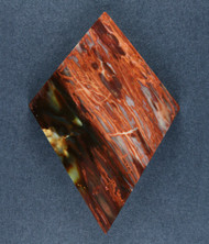 Unusual Tuscarora Petrified Wood Designer Cabochon  #17494