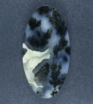 Exceptional Marfa Black Plume Agate Designer Cabochon  #17548