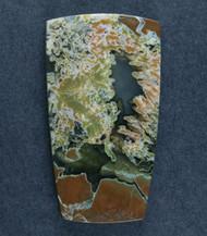 Amazing Priday Plume Agate Designer Cabochon  #17567