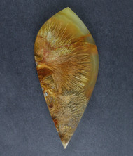 Gorgeous Designer Cabochon of Nipomo Sagenite Agate  #17618