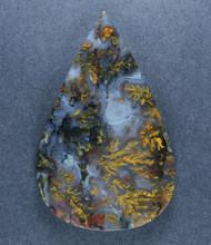 Rare!! Intricate Big Diggins Plume Agate Cabochon  #17620