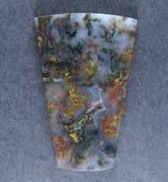 Rare!! Intricate Big Diggins Plume Agate Cabochon  #17665
