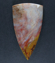 Gorgeous Grassy Mtn. Petrified Wood Designer Cabochon  #17667