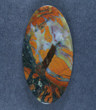 Dramatic Old Stock Stone Canyon Jasper Cabochon   #17677
