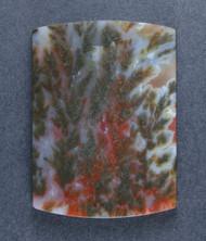 Rare Powell Butte Plume Designer Cabochon-   #17700