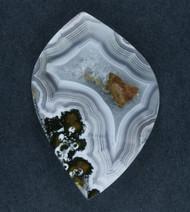 Laguna Agate Designer Cabochon-  White w Sagenite  #17739