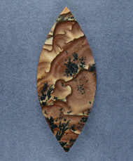 Deschutes Picture Jasper Designer Cabochon - Old Stock  #17752