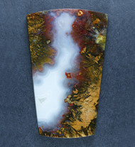 Colorful Designer Cabochon of Mexican Sagenite Agate  #17784
