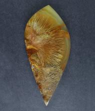 Gorgeous Designer Cabochon of Nipomo Sagenite Agate  #17855