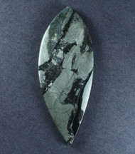 Apache Gold- Pyrite in Agate Designer Cabochon   #17868