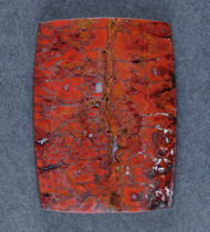 Dramatic designer cabochon of Cadys Red Plume Agate   #17916