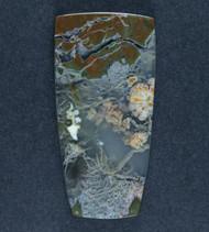 Amazing Priday Plume Agate Designer Cabochon  #17994